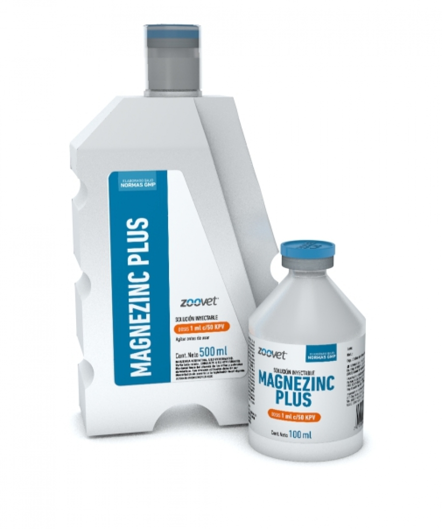 MAGNEZINC PLUS