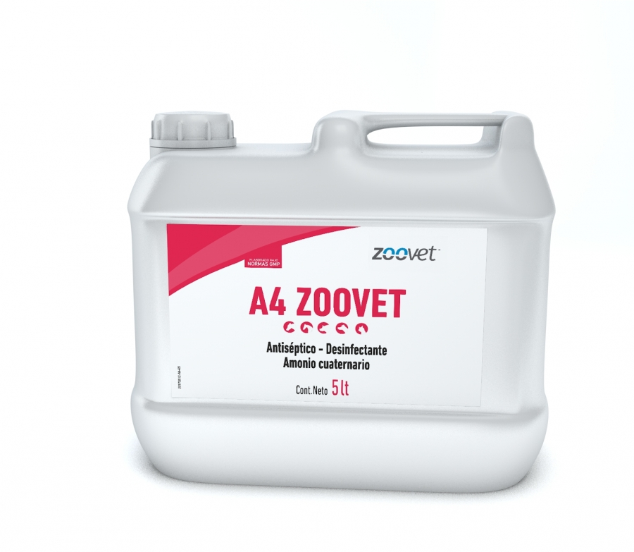 A4 ZOOVET